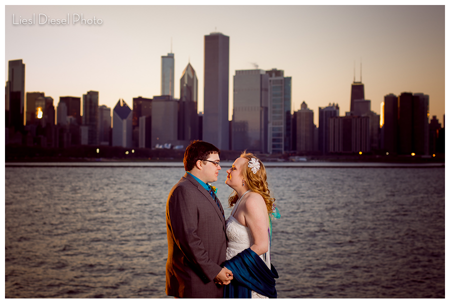 1-liesldieselphoto-chicago-skyline