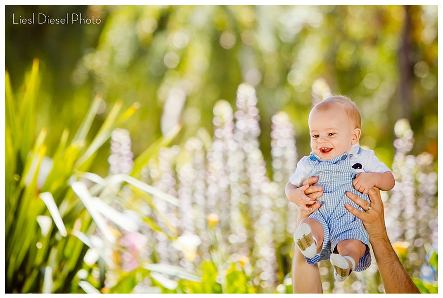 santa monica california baby family portrait session