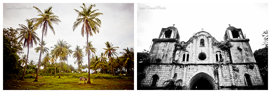 dumaguete philippines cebu spanish church palm tree scene