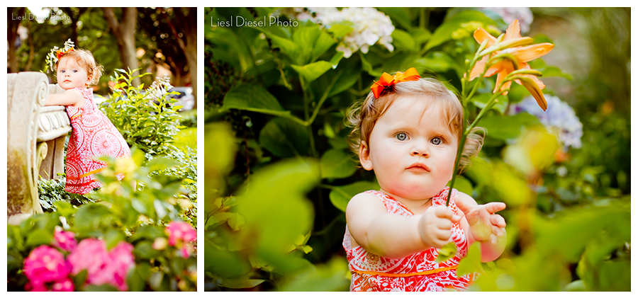 1 year old portrait baby photographer liesl diesel photo